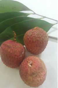 Choose Right Lychees