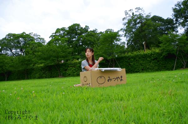 草原で内職2