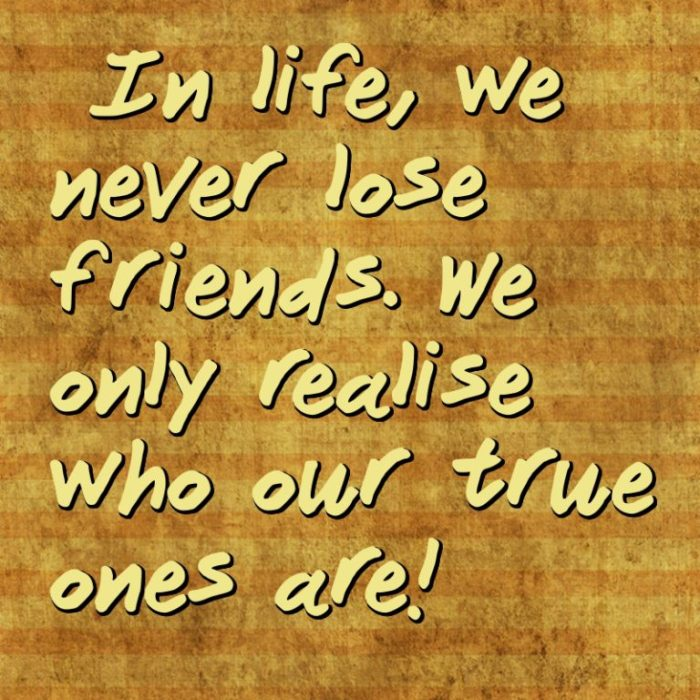True Friendships Stand The Test Of Timeand Revisits