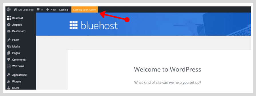 Coming Soon Active option by Bluehost.