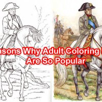 10 Reasons Why Adult Coloring Books Are So Popular