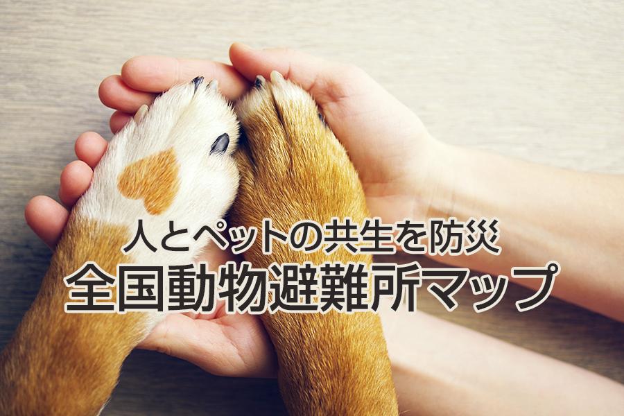 全国動物避難所マップ開設へ!人とペットの共生を防災を通して行おう