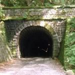 """旧天城トンネルの正式名は天城山隧道。国道の新天城トンネルと区別するため「旧天城トンネル」と呼ばれています。平成13年にトンネルとしては初めて国の重要文化財に指定された伊豆・天城山中にある隧道(トンネル)です。当時のお金で10万3000円を投入し、12人の犠牲者を出して明治37年に完成。伊豆半島ジオパークのジオサイトにもなっています。 日本初の重要文化財になった石造道路トンネル 嘉永7年3月3日(1854年3月31日)に締結された日米和親条約により、南伊豆・下田港は箱館(函館)港と並び、日本で最初に開港された港となりました。 下田港の開港後、天城峠を越える下田街道は東海道・三島宿と下田港を結ぶ重要なルートとなっていました。 大仁(おおひと)の吉田石を使い、切り石で組まれた全長445.5mの隧道(旧天城トンネル)は、石造道路トンネルとしては、日本最長。 平成13年に道路トンネルとしては初めて国の重要文化財に指定されています。 川端康成『伊豆の踊子』は、19歳の時の実体験がベース [su_row] [su_column size=""""1/2""""][/su_column] [su_column size=""""1/2""""][/su_column] [/su_row] 一高入学の翌年、19歳の川端康成が旅芸人の一行とこの天城山隧道(旧天城トンネル)を抜けたのは大正7年11月のこと。 10月30日に旧制第一高校寄宿舎を出発、翌日は修善寺温泉に泊まり、11月1日・2日に湯ヶ島温泉「湯本館」泊。 徒歩で天城山隧道(旧天城トンネル)を越え、途中、旅芸人一座と道連れになります。 「踊子歩道」の名でハイキングコースとして整備されている道は、川端康成の小説『伊豆の踊子』で、踊り子一行が歩いた旧下田街道を含む道。 『伊豆の踊子』では、主人公は一高の学生で20歳。つまりは川端康成自身だったのです。 幼い踊子・加藤たみ(松沢たみという説もある)と出会い、一座を率いる時田かほる(踊子の兄)旅の後も文通がありました(川端康成が『伊豆の踊子』を雑誌『文藝時代』に掲載したのは、旅の7年後、大正15年1月号)。 小説の舞台、浄蓮の滝から二階滝までを歩くプランなら、10.2km、3時間5分と手頃。 コースのハイライトはこの旧天城トンネル。 小説のなかで、「道がつづら折になって、いよいよ天城峠に近づいたと思うころ」と書き出された部分で、当時の面影がそのままに残されています。 車利用なら帰路はバスで浄蓮の滝に戻ることも可能です。 旧天城トンネルを含む旧道は天城路として「日本の道100選」にも選定。 [su_box title="""" 映画『伊豆の踊子』ロケ地"""" box_color=""""#252108""""] 映画『有りがたうさん』(昭和11年・上原謙主演)ロケ地。 映画『伊豆の踊子』は、田中絹代・大日方傳(昭和8年/松竹)、美空ひばり・石濱朗(昭和29年・松竹)、鰐淵晴子・津川雅彦(昭和35年・松竹)、吉永小百合・高橋英樹(昭和38年・日活)、内藤洋子・黒沢年男(昭和42年・東宝)、山口百恵・三浦友和(昭和49年・東宝)とこれまで6回制作されています。 [/su_box] 《幸江さんに伝言》 浄蓮の滝と相互リンクをお願いします"""