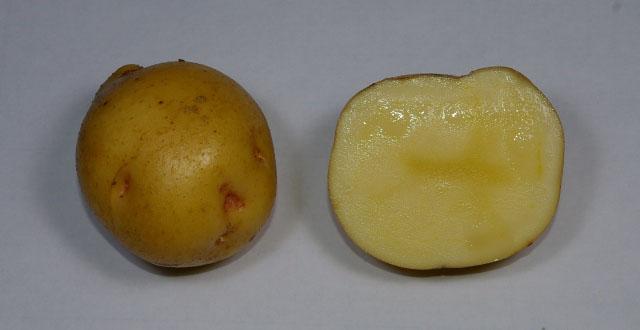 kitaakari-potato