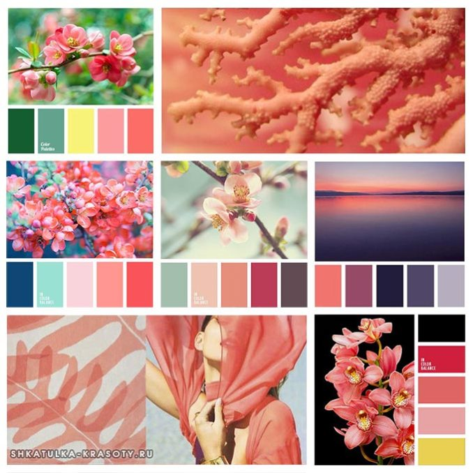 palette of coral color in clothes