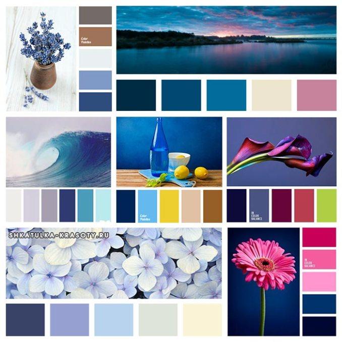 dark blue palette