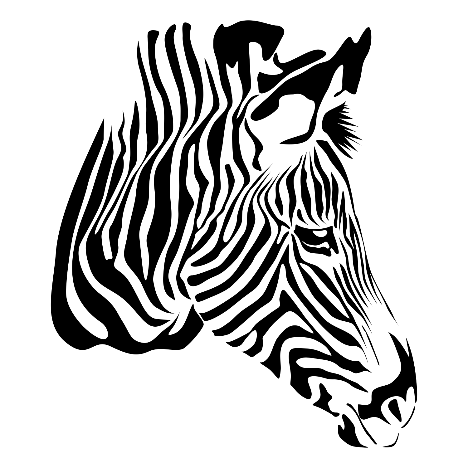 Vector For Free Use Zebra On White
