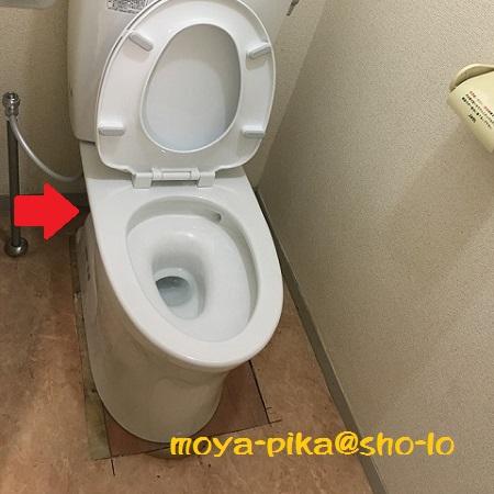 cockroach-toilet-4