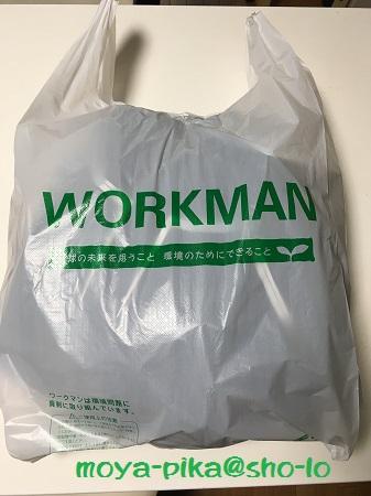 ワークマンイージスオーシャン購入の袋