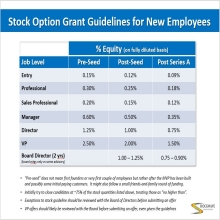 Stock Option Grant Guidelines