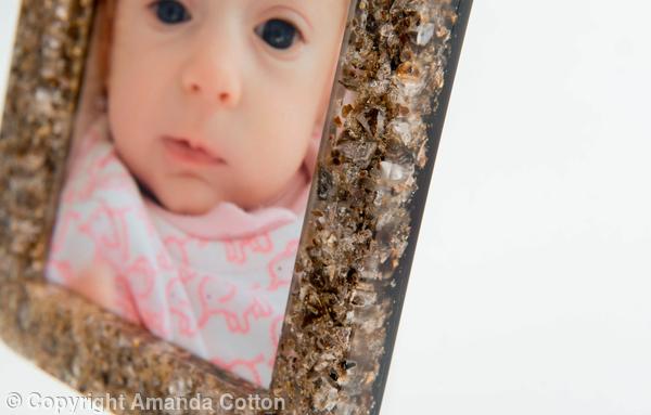 459245_placenta-photo-fame