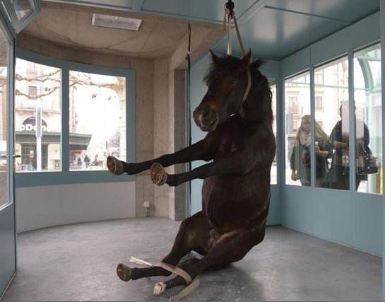 cheval genève 2