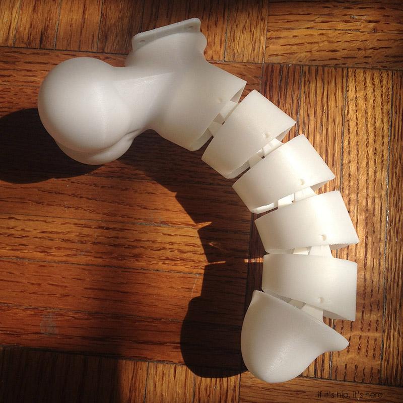 3D-printed-erectable-penis-model-IIHIH