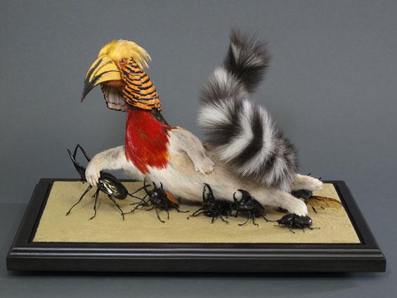 gomez-de-molina-animaux-empailles-morts-taxidermie-croisement-7