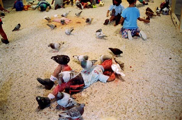 kader-attia-pigeons-enfants-3-flying-rats