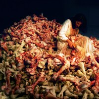 Marina Abramovic : L'art de dépasser les limites