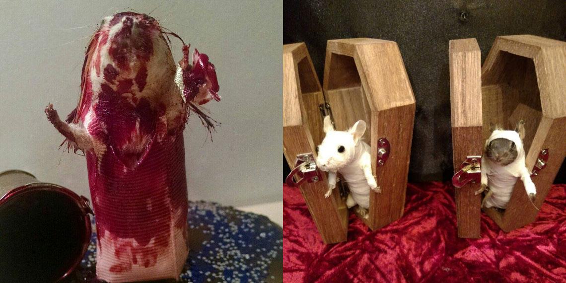 """Rachel Garcia : Des souris mortes transformées en personnages de """"Walking Dead"""""""