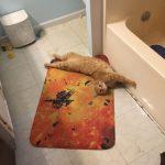 Larry Loves the Explosion Bath Mat