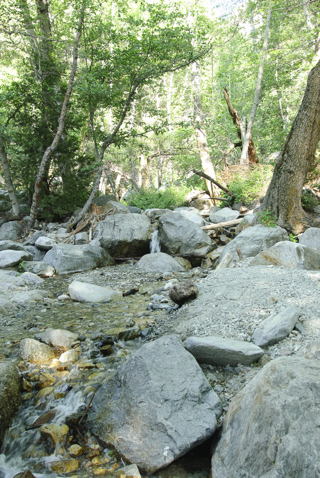 Icehouse Canyon Creek