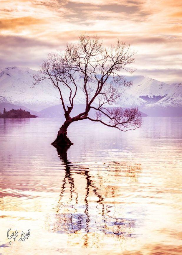 خلفيات كمبيوتر طبيعية اجمل صور من الطبيعة البكر