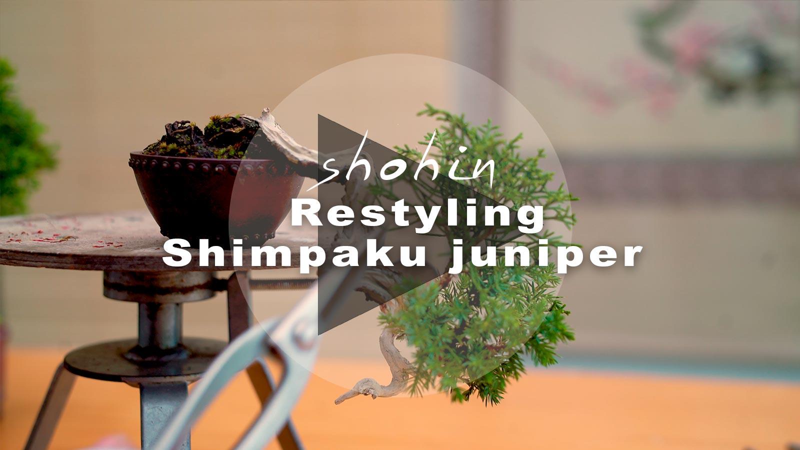 PLAY-VLOG-shimpaku