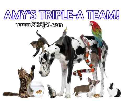 TripleA-Logo