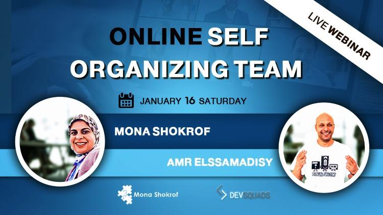 self organizing teams webinar