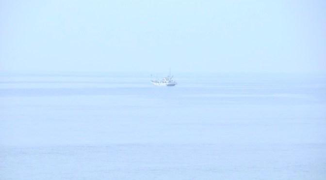 朝もやに包まれた七里ガ浜