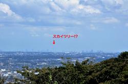 平塚湘南平のレストハウス展望台からのスカイツリー