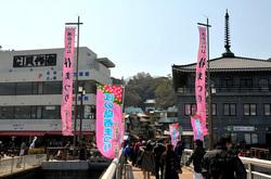湘南江の島春まつり2014
