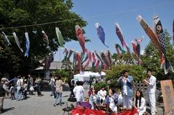 白旗神社@藤沢の牛若祭りの鯉のぼりとお囃子
