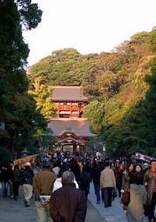 鎌倉の紅葉スポット鶴岡八幡宮
