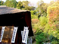 鎌倉の紅葉スポット杉本寺