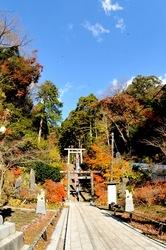 鎌倉紅葉スポット天園ハイキングコース建長寺の半蔵坊