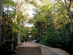 鎌倉紅葉スポット鎌倉駅周辺の妙本寺