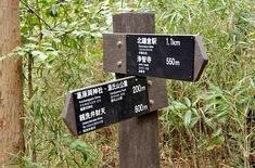 鎌倉紅葉スポット鎌倉駅周辺の大仏ハイキングコース