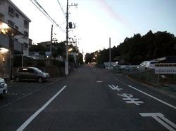 善行森@亀井野でカブトムシ&クワガタ採集