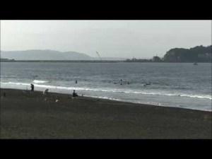 辻堂海岸最新波情報動画
