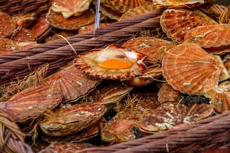 Seafood - Rue Mouffetard