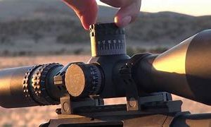 Consigned Optics