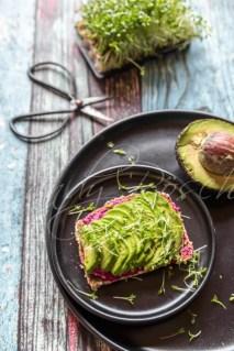 Brot mit Rote-Bete-Hummus, Avocado und Kresse, Studio