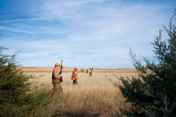 Men hunting in large field