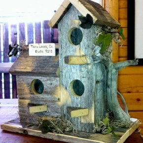 Bird house fun in Twin Lakes