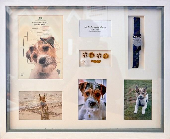 Memory Frames Brixham Torbay Devon