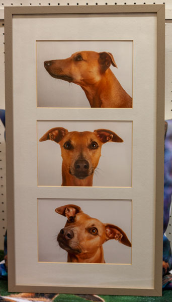 portrait triptych