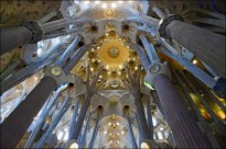 Looking up at the vault crowning the interior of the basilica's nave, one can see the resemblance of a dense forest of trees with sunlight shining through it