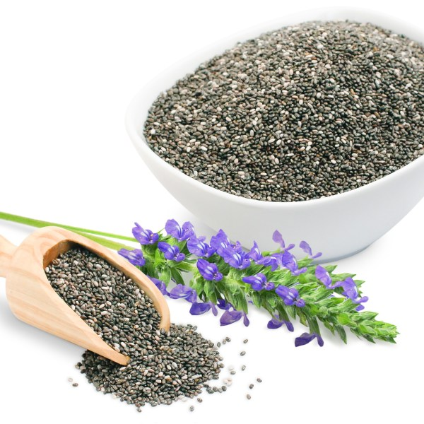 chia_seeds_bowl_with_flower_1 (1)