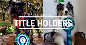 dog parkour title holders
