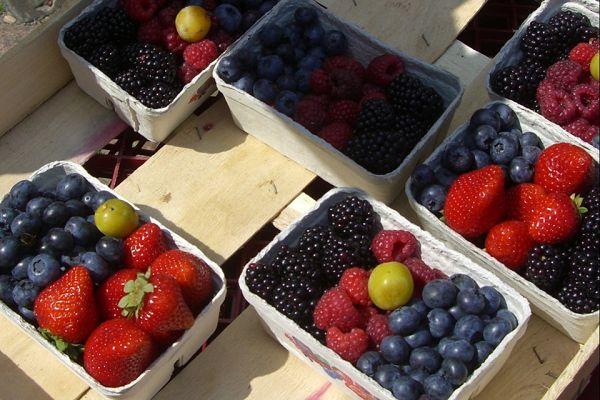 Lebensmittel #9: Früchte, Obst & Beeren