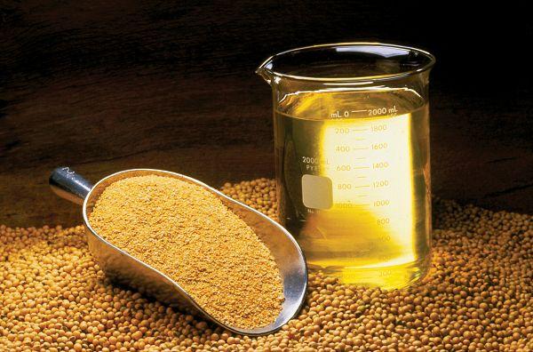 Schlecht für die Gesundheit: Omega 6 reiches Sojaöl